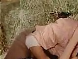 The Pigkeeper Stepdaughter 1972